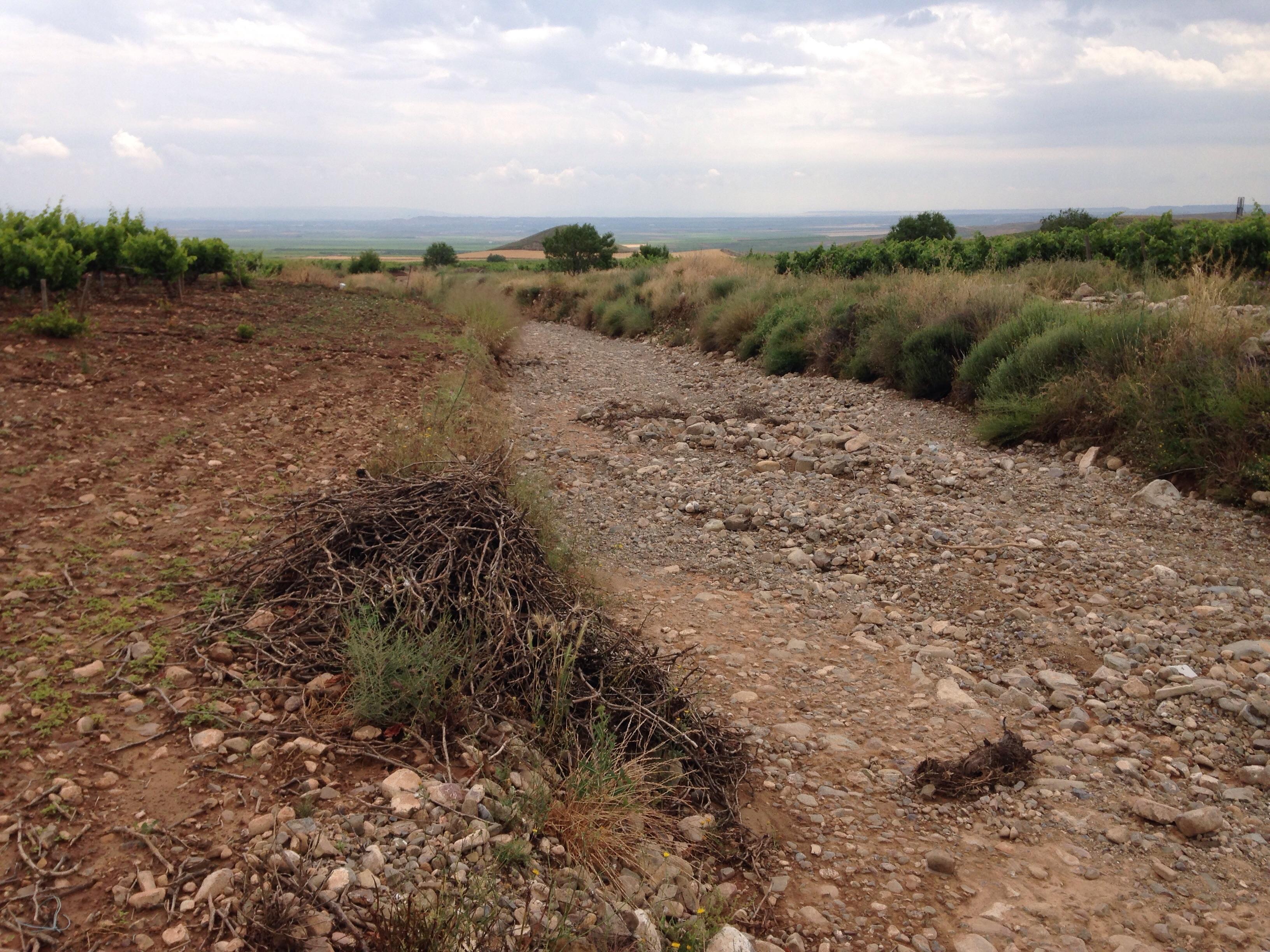 80 mm en La Rioja Baja durante estos días!!